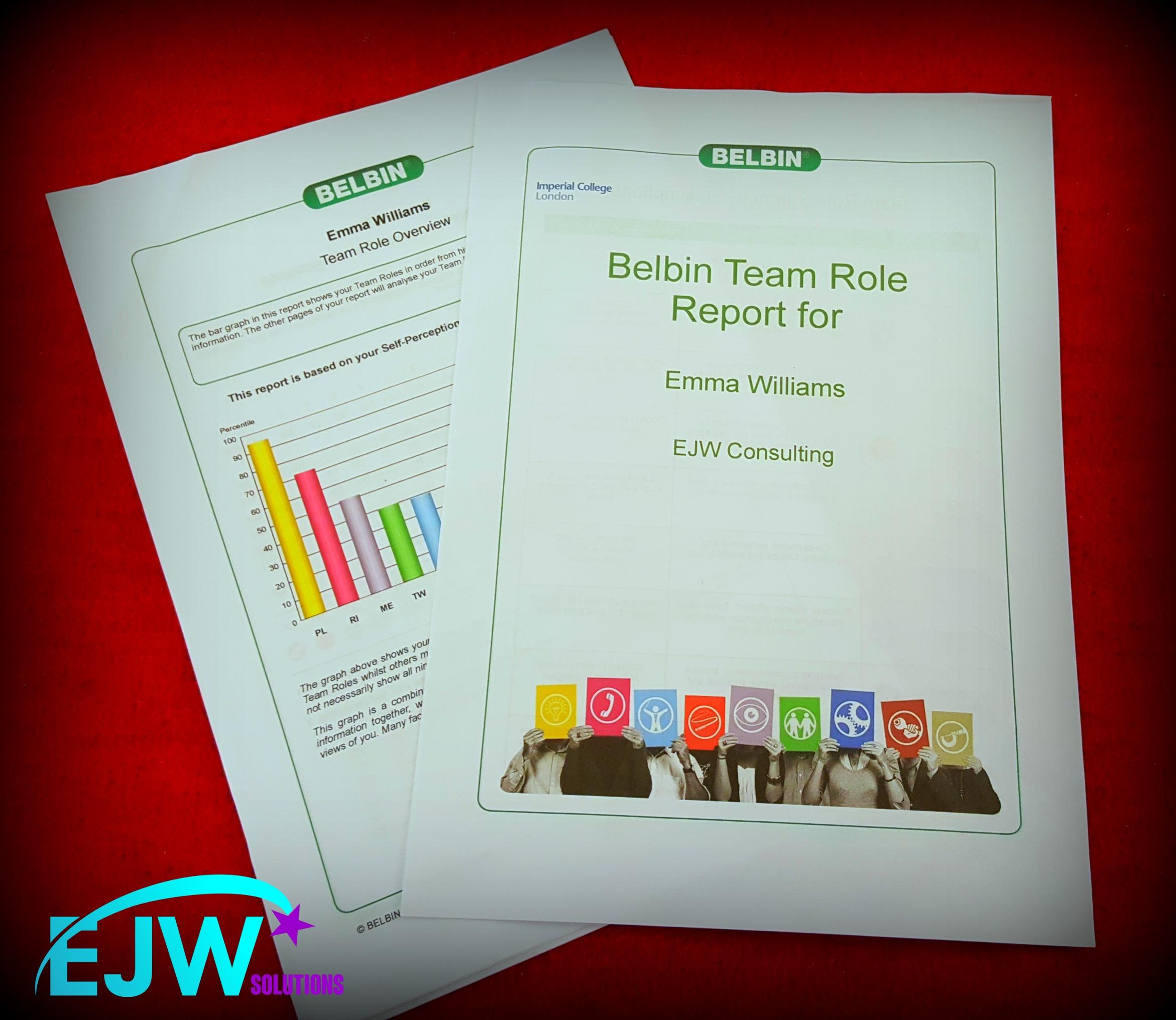 belbin report